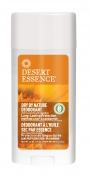 Desert Essence Tuhý deodorant Neutral (70 ml) – obsahuje speciální směs bylin, esenciální oleje heřmánku a měsíčku, které poskytují pokožce účinnou ochranu. Je vhodný i pro citlivou pokožku. Neobsahuje hliník. www.DesertEssence.cz.