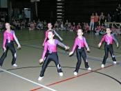 Fotogalerie: Akademická aerobic show 2013