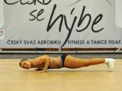 Výsledky CZECH OPEN 2013 - otevřeného Mistrovství ČR ve sport. aerobiku a FISAF fitness týmech a HipHop Unite