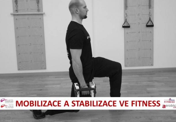 mob.stab.ve-fitness1.jpg