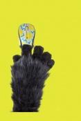 Bavte se s myšmi Logitech z designové kolekce 2016 Party Collection